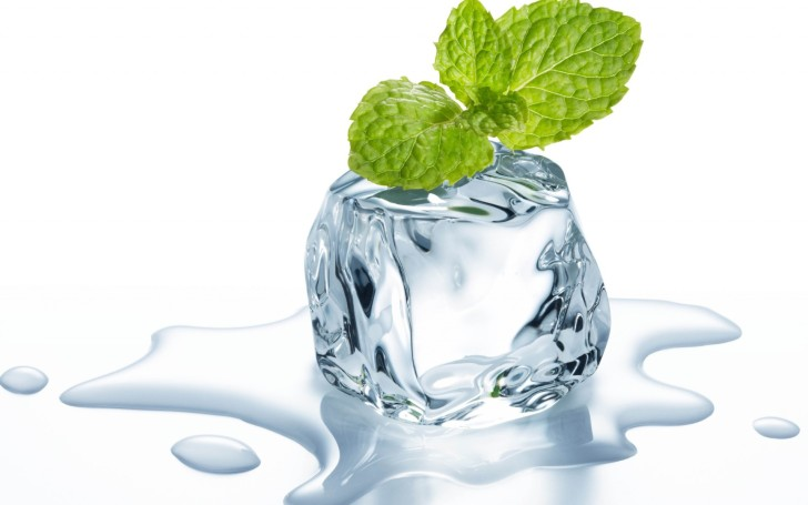 mint-leaves-on-melting-ice-cube-hd-wallpaper-728x455